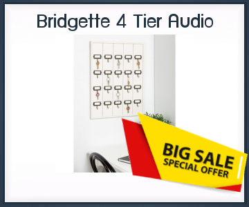 Storageauctionscalifornia Bridgette 4 Tier Audio